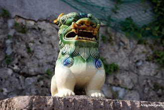 Photo: Shisa (Shi Shi Dog)