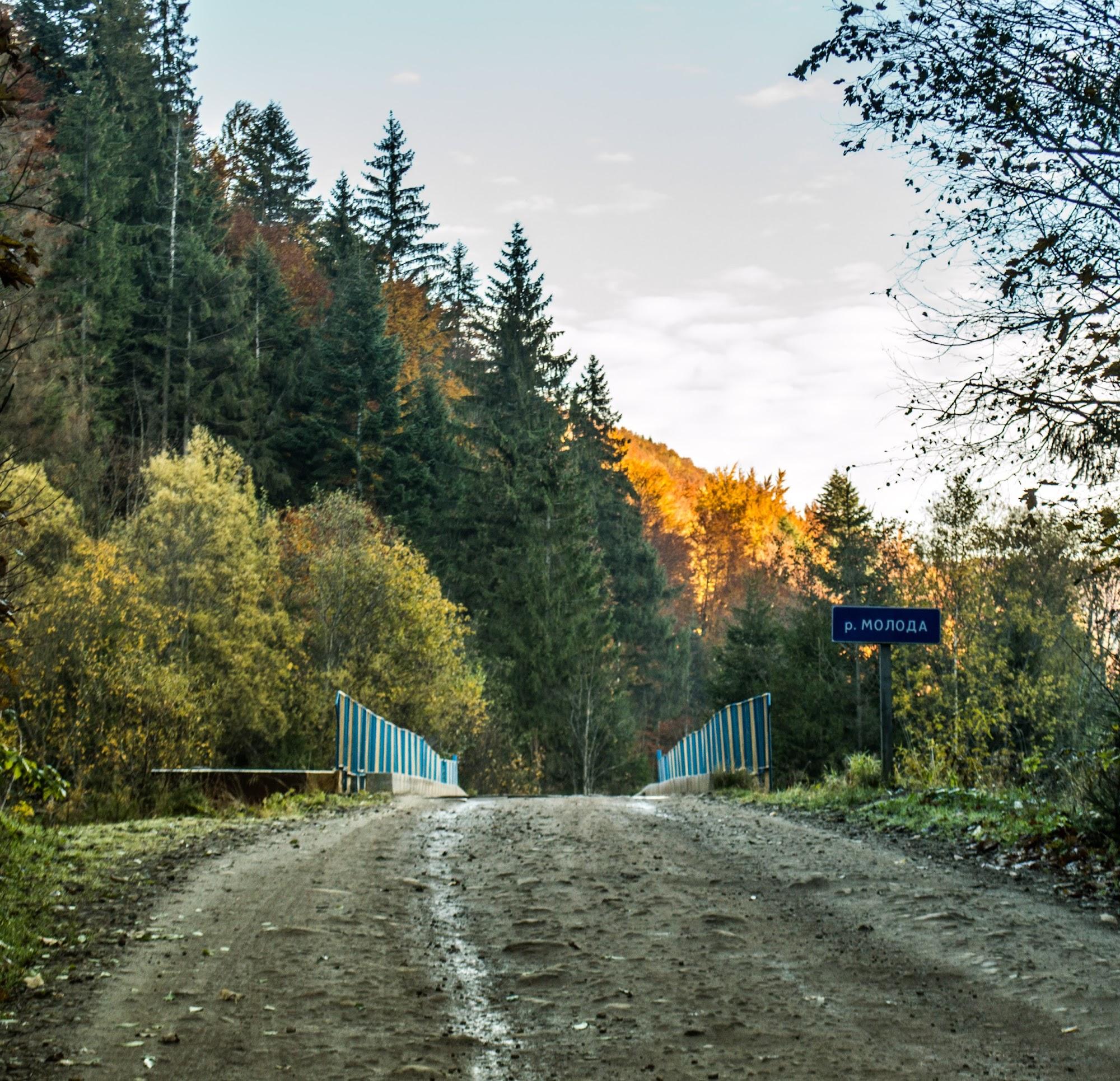 Міст через річку Молода
