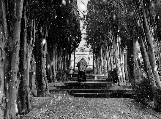 Monaco nella tempesta... di Giovanni Coste