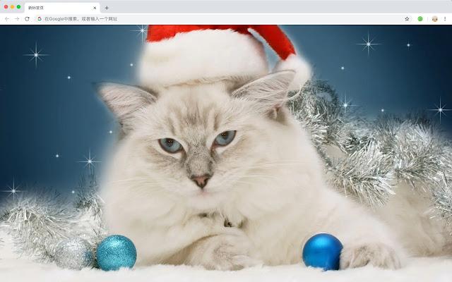 Christmas Kitten and Puppy Pet Hot Topics