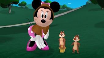 Minnie's Mystery