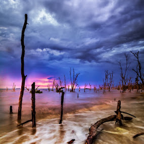 kaku mati  /  still death  by Najmi Rooslan - Landscapes Sunsets & Sunrises ( cokin, tamron 11-18mm, canon 60d, malaysia, landscape, hoya, morib )