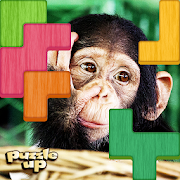 Puzzle Up