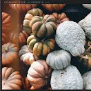 Autumn Gourds - Halloween item