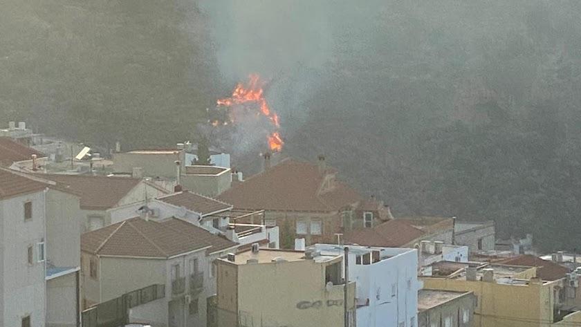 Fotografía de las llamas, que se encuentran muy próximas al municipio.