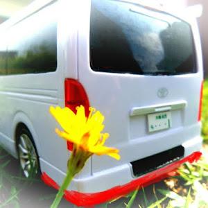ハイエースバン TRH200Vのカスタム事例画像 シュナ 🐾🐶🐾CT2期生さんの2020年07月26日02:06の投稿
