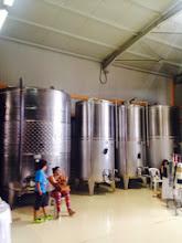 Photo: Wine tasting in Nemea