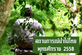 สถนการณ์ป่าไม้ไทย 2558