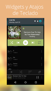 Rocket Music Player Premium APK 5