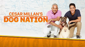 Cesar Millan's Dog Nation thumbnail