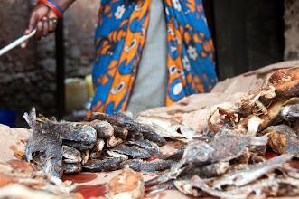 Photo: Nov -5th. Community business owner + fish! (taken by Jonathan Kalan http://www.puravidaphotos.com/the-bop-project)