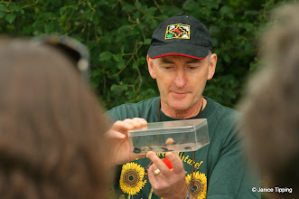 Photo: Dr. Martin Hall of the Natural History Museum examines some of the beetles found on the Bug Hunt.
