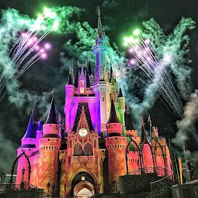 Disney celebration  by Martin Wheeler - Buildings & Architecture Public & Historical ( disney world orlando fireworks castle celebration vacation family fun )