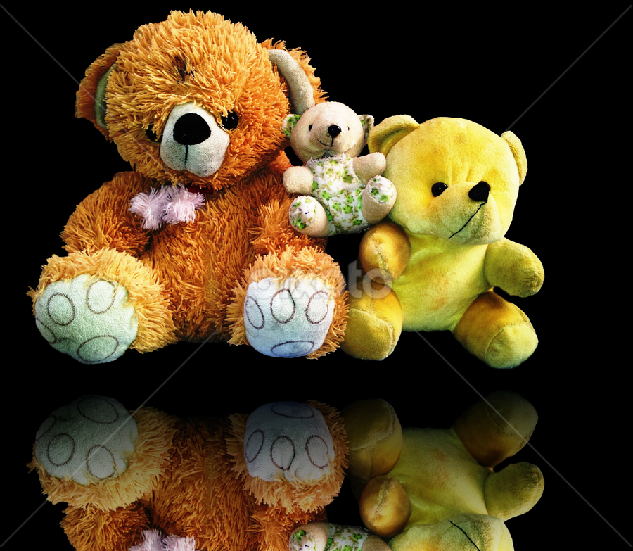 Mr & Mrs. Teddy Bear by Diliban P - Artistic Objects Toys ( bear, toy, artistic, kids, teddy,  )