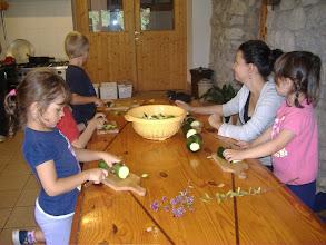 Photo: tagliamo le zucchine appena raccolte
