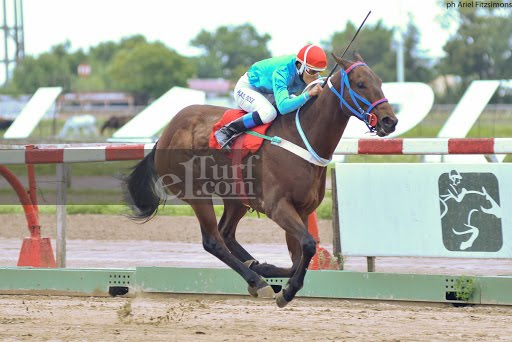Anello (Easing Along) se impuso en Condicional (1200m-Arena-LP). - Staff ElTurf.com