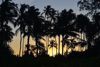 Photo: Avis aux amateurs de couchers de soleil : malgré une météo assez régulière, j'ai constaté (à mes dépens) qu'aucun jour ne ressemble à l'autre ; une photo manquée n'est donc pas rattrapable le lendemain !