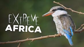 Extreme Africa thumbnail