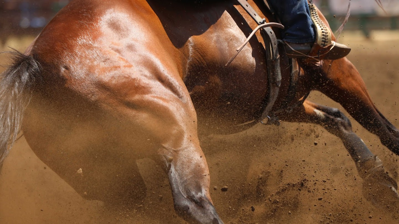 PBR: Keep Riding