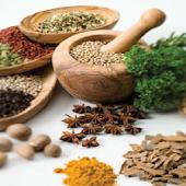 Siddha Medicine Glossary Tamil