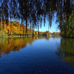 Picture scene by Trippie Visser - City,  Street & Park  City Parks ( water, park, autumn, trees, leaves )