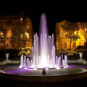 Tomislav square at night by Nena Volf - City,  Street & Park  Fountains ( tomislav square, fountain, croatia, night, zagreb )