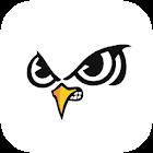 SlingerOwls icon