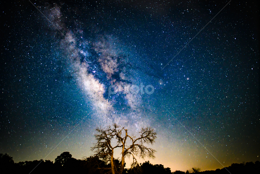 by Judy Rosanno - Landscapes Starscapes ( near enchanted rock state park, texas, night sky, dead tree, milky way,  )