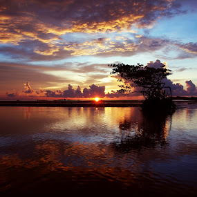 by Mohd Shahrizan Taib - Landscapes Weather ( water, sky, tree, zuiko lens, blue, 14mm, sea, tripod, sun )
