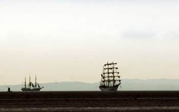Photo: Tall Ships Races set fra Ballehage, Aarhus