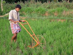 Photo: India- Karnataka
