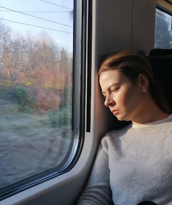 La ragazza del treno di Tiziana Detoni