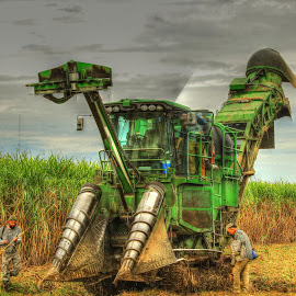 Sugarcane Harvester by Ron Olivier - Transportation Other ( sugarcane harvester )