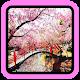 Japanese Garden Design for PC-Windows 7,8,10 and Mac