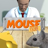 Mouse Escape 3D Labyrinth Maze