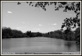 Photo: 005 of 365 - 04-07-2012 -