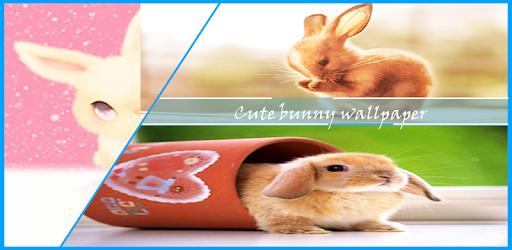 Descargar Cute Bunny Wallpaper Para Pc Gratis última