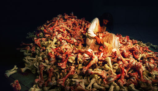 Balkan Baroque Venice Biennale Marina Abramovic