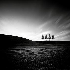 Siënna by Fernand De Canne - Landscapes Prairies, Meadows & Fields ( black and white, landscape )