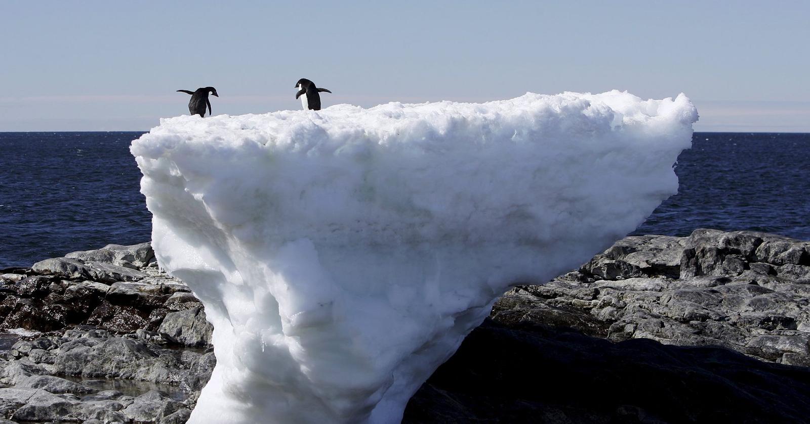 ¡Antártida se Derrite!: Niveles del mar subirán 20 metros