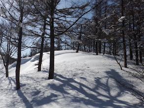 山頂手前のピーク
