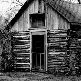 1825 Log Cabin by Don Kuhnle - Black & White Buildings & Architecture ( farm, cabin, black and white, log cabin, antique )