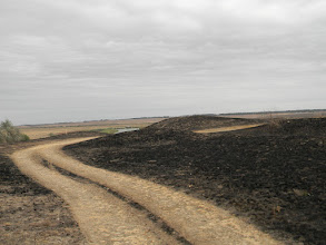 Photo: дорога пролегает мимо тех самых укреплений, где держали оборону казачьи полки